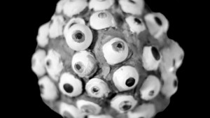 Hypochonder im Zwiegespräch | 2013 | Digitales und 16mm Compositing | 15 Minuten